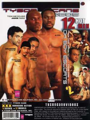 Oh Boy Escorts #2: The Apartment DVD (Back Cover)