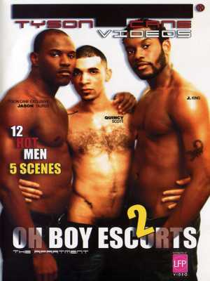 Oh Boy Escorts #2: The Apartment DVD (Front Cover)
