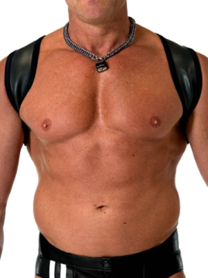 665 Leather Neoprene Slingshot Harness Black/Black (Front Cover)