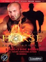 Fallen Angel 5: Horse 5-DVD-Set