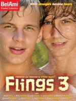 Flings 3 DVD