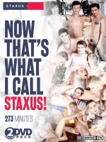 Now That`s What I Call Staxus! 2-DVD-Set