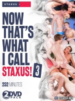 Now That`s What I Call Staxus! #3 2-DVD-Set