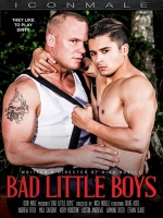 Bad Little Boys DVD