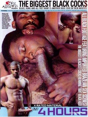 Gay vip clip