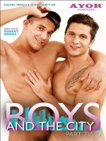 Boys and the City 2 DVD