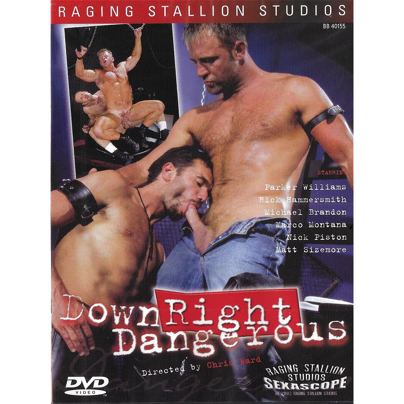 Down Right Dangerous DVD (07033D)