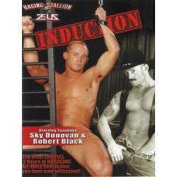 Induction DVD (11053D)