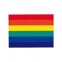 Rainbow Aufkleber / Sticker 5,0 x 7,6cm / 2 x 3 inch (T1042)