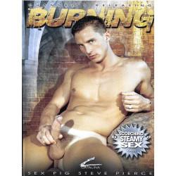 Burning DVD (Catalina) (16195D)