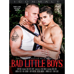 Bad Little Boys DVD (16393D)