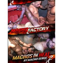 Machos In Heat #2 DVD (Macho Factory) (16081D)