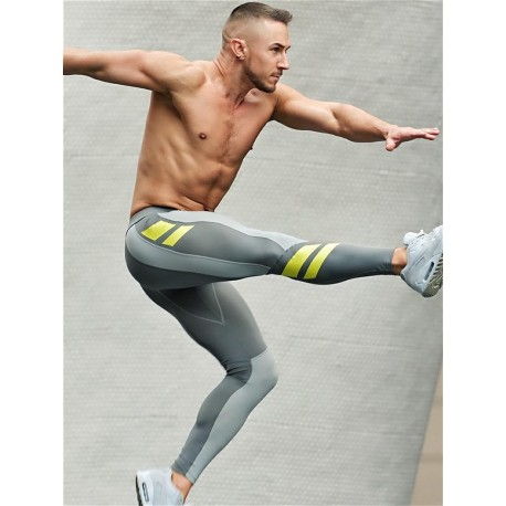 2Eros Pro Aktiv Compression Tights Leggings Titanium (T5347)