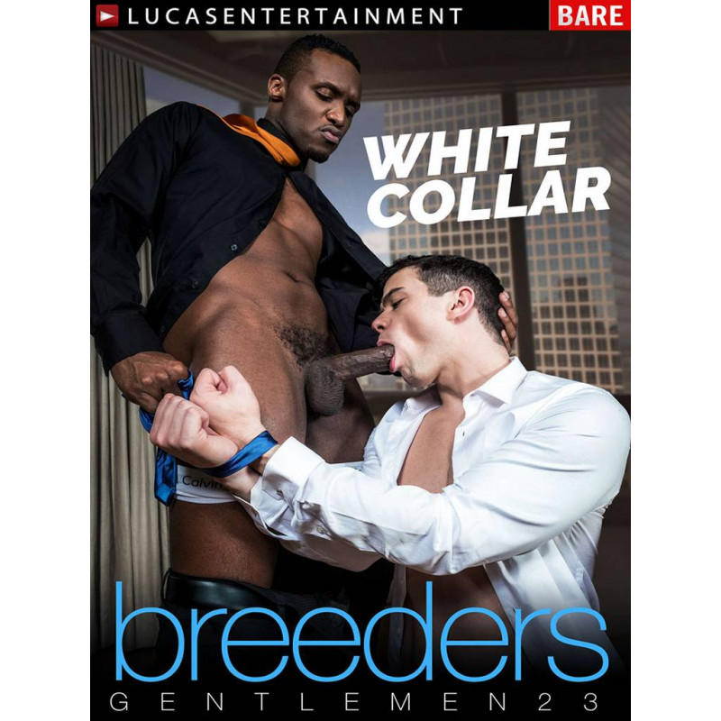 Gentlemen #23: White Collar Breeders DVD (16756D)