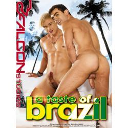 A Taste Of Brazil DVD (17095D)