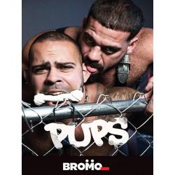 Pups DVD (17403D)