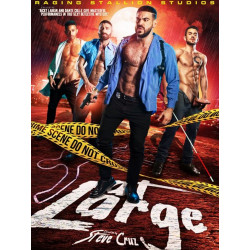 At Large DVD (17751D)