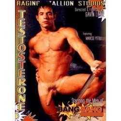 Testosterone DVD (03952D)