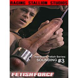Sounding #3 DVD (04823D)
