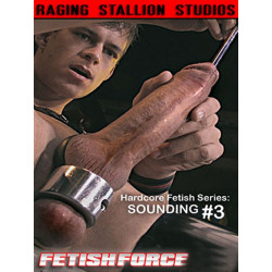 Sounding #3 DVD (Raging Stallion) (04823D)