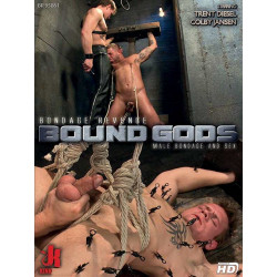 Bondage Revenge DVD (13876D)