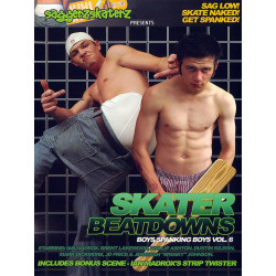 Skater Beatdowns DVD (13384D)