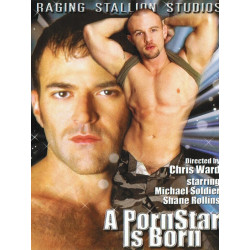 A Pornstar is Born DVD