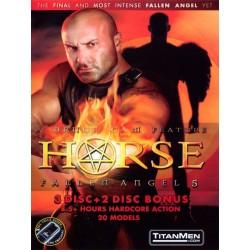 Fallen Angel 5: Horse 5-DVD-Set (01565D)