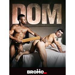 Dom DVD (15144D)