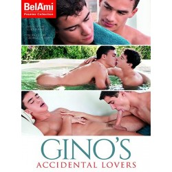 Gino`s Accidental Lovers DVD (15248D)