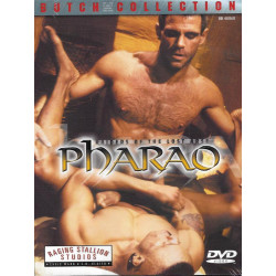 Raiders of the Lost Arse - Pharao DVD (10360D)