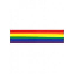 Rainbow Aufkleber / Sticker 5,08 x 38,1 cm / 2 x 15 inch (T5196)
