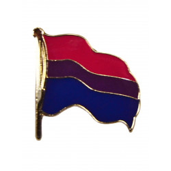 Pin Waving Bi Flag (T5223)