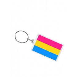Pansexual Flag Key Ring (T5150)